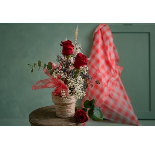 Center Priorat Roses